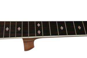 DIY Guitar