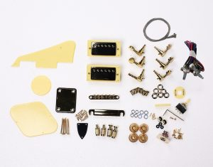 DIY Electric Guitar Kit