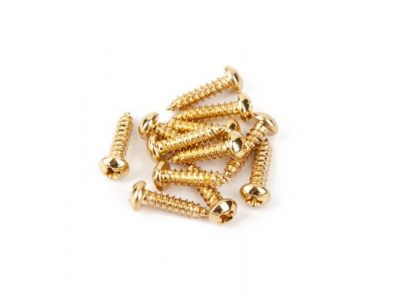 Pure Vintage Tuning Machine Mounting Screws
