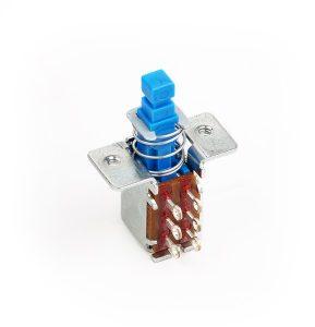 Fender® Push-Push Switch (DPDT)