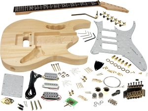 Solo JEM Style DIY Guitar Kit, Basswood Body, Maple Neck, Vine Inlay